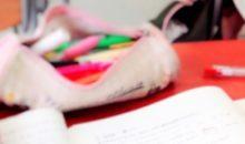 バッグすっきり!しまい方でなく使い方の見直し成功事例【片づけ365日】vol.9